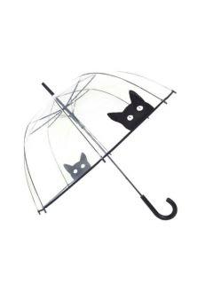 transparante_paraplu_kat_smati